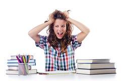 Student preparing for  exams Stock Photo