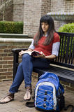 Student Reading Stock Photo