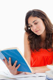 Student reading a blue book Stock Image