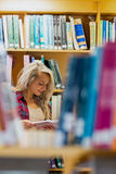 Student reading book amid bookshelves in the library Stock Photo