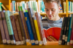 Student reading a book amid bookshelves in the library Stock Images
