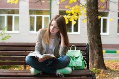 Student reading book in autumn. Student sitting on bench and reading book in autumn Stock Images