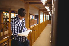 Student reading book in college library. Concentrated student reading book in the college library Stock Image