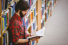 Student reading a book from shelf in library. At the university Royalty Free Stock Images