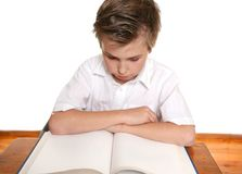 Student reading or studying Royalty Free Stock Photography