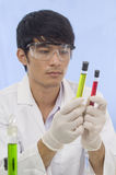 Student Researcher with 2 test tubes. Student Scientist examining chemicals in a laboratory Stock Images