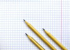 Student`s notebook in a cage. On the sheet are three pencils. stock photo