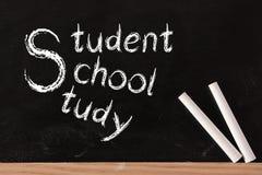 Student School Study arkivfoton