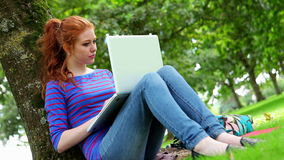Student sitting against a tree using her laptop. On college campus stock footage