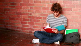 Student sitting against wall reading textbook Stock Image