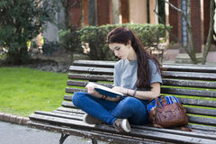 Student sitting on wood bench and read blue book, outdoor. Stock Images