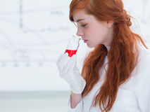 Student smelling lab substances Royalty Free Stock Photos