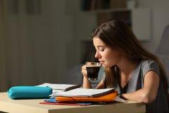 Student som studerar dricka hous kaffe sent royaltyfri fotografi
