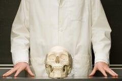 Student stood with human skull Stock Photos