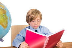 Student studying from his notebook Royalty Free Stock Photo