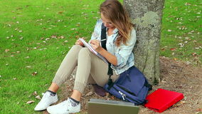Student studying and leaning against a tree Stock Photography