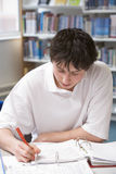Student studying in library Stock Photos