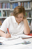 Student studying in library Royalty Free Stock Photo