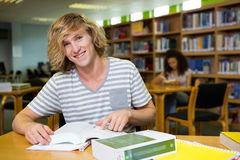 Student studying in the library Royalty Free Stock Images