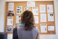 Student studying notice board Stock Photography