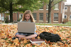 Student studying outdoors Stock Photography