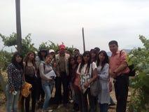 Student Training Agronomy i vingårdar Royaltyfri Bild