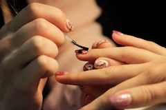 A student at the training courses of manicure prepares the hand of the client before applying shellac. application on. The nails of the protective finish Stock Photography