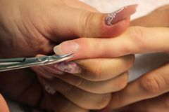 A student at the training courses of a manicure prepares the hand of a lady client with a manicure scissors for cuticles. Before applying shellac Royalty Free Stock Photos