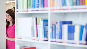 Student in an university library Royalty Free Stock Image