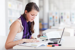 Student  in the university library Stock Image