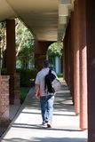 Student Walking To Class Royalty Free Stock Images