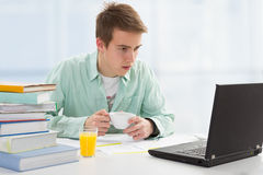 Student working on computer Stock Photos
