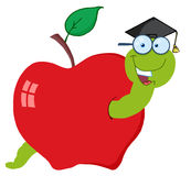Student worm in an apple Stock Photo