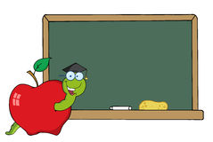 Student worm in an apple by a chalkboard Royalty Free Stock Photography
