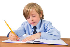 Student writing notes in notepad. On white background Stock Photography