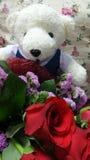 Studentbjörn och bukett royaltyfri foto