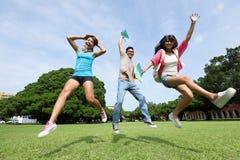 Studentdiversiteit op universitaire campus Royalty-vrije Stock Afbeelding