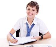 Studente allo scrittorio Immagini Stock