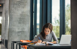 Studente asiatico che studia nella biblioteca Fotografia Stock