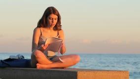 Studente che studia memorizzando le note al tramonto stock footage