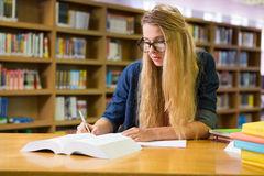 Studente che studia nella biblioteca Fotografia Stock Libera da Diritti