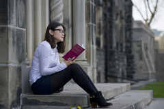 Studente che studia sulla città universitaria Fotografia Stock Libera da Diritti