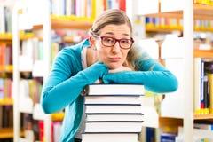 Studente con il mucchio di apprendimento di libri nella biblioteca Immagini Stock