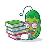 Studente con stile del fumetto della mascotte dei piselli del libro Fotografia Stock