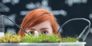 Studente curioso del laboratorio Immagini Stock