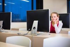 Studente di college femminile grazioso e giovane che per mezzo di un desktop computer Fotografie Stock