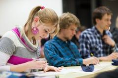 Studente di college femminile grazioso in un'aula Fotografia Stock
