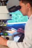 Studente di scienza che guarda tramite il microscopio Fotografie Stock Libere da Diritti