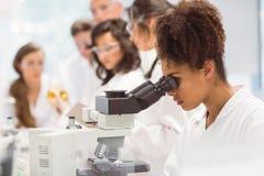Studente di scienza che guarda tramite il microscopio in laboratorio Fotografia Stock