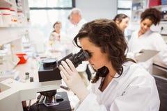 Studente di scienza che guarda tramite il microscopio in laboratorio Immagine Stock
